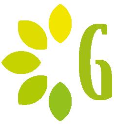 Logo fiavi